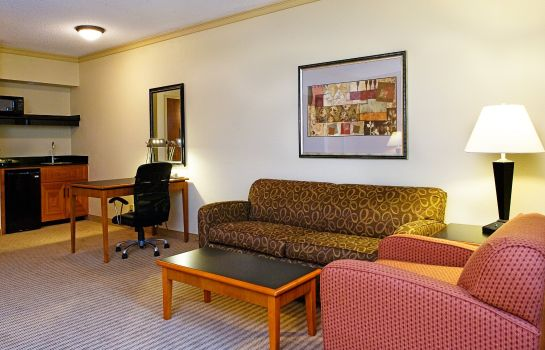 Habitación Holiday Inn Express & Suites IRVING DFW AIRPORT NORTH
