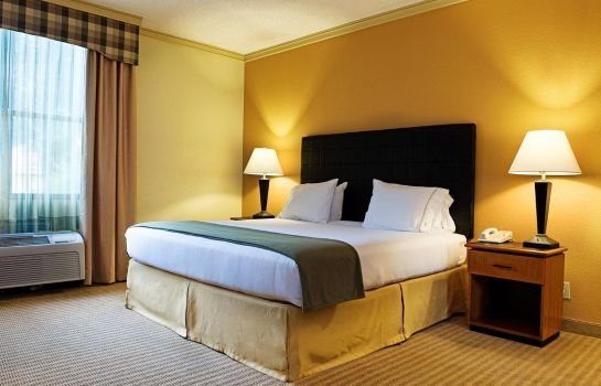 Chambre Holiday Inn Express & Suites IRVING DFW AIRPORT NORTH