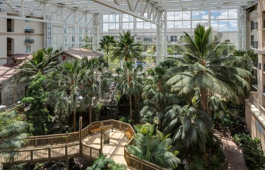 Zimmer Gaylord Palms Resort & Convention Center