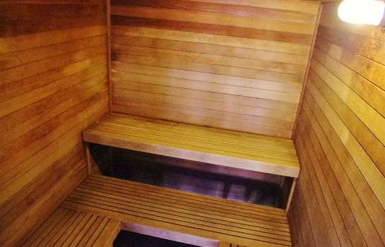 Sauna Glenwood Springs Cedar Lodge