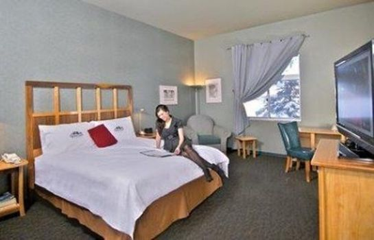 Chambre DIMOND CENTER HOTEL