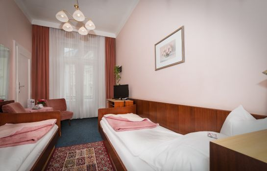 Single room (standard) Pension Neuer Markt