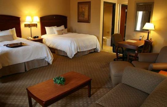 Suite Hampton Inn and Suites-Brownsville