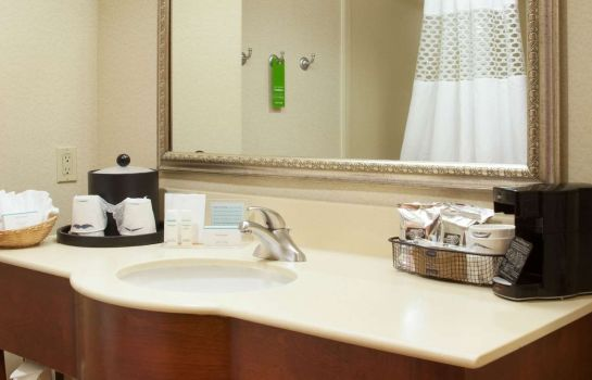 Chambre Hampton Inn and Suites-Brownsville