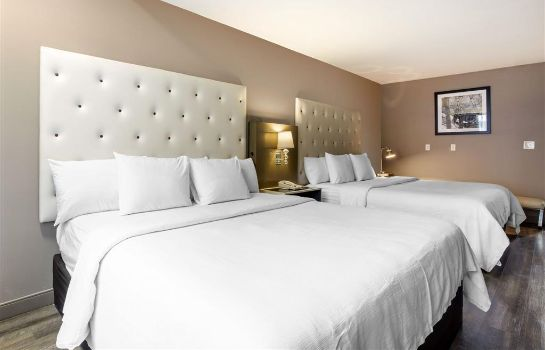 Chambre Hotel Frederica an Ascend Hotel Collecti