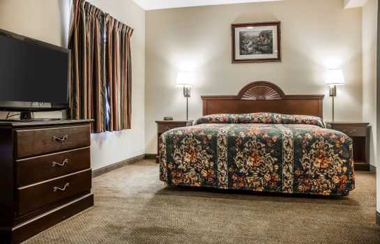 Suite Econo Lodge Inn & Suites Airport