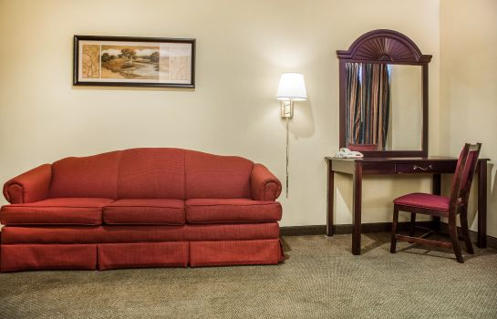 Suite Econo Lodge Inn and Suites Airport