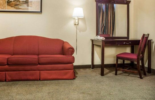 Tweepersoonskamer (comfort) Econo Lodge Inn and Suites Airport