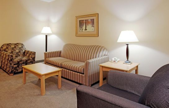 Suite Holiday Inn Express & Suites AMARILLO