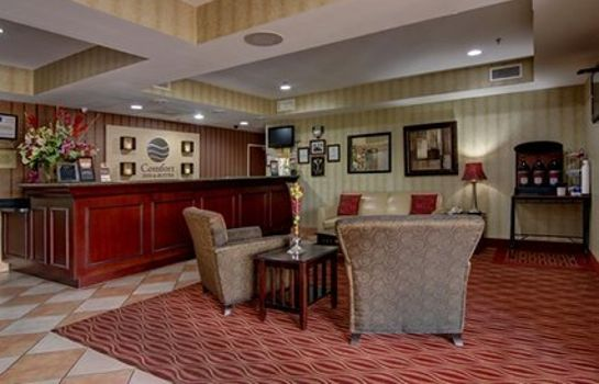 Lobby Comfort Inn and Suites Griffin Comfort Inn and Suites Griffin