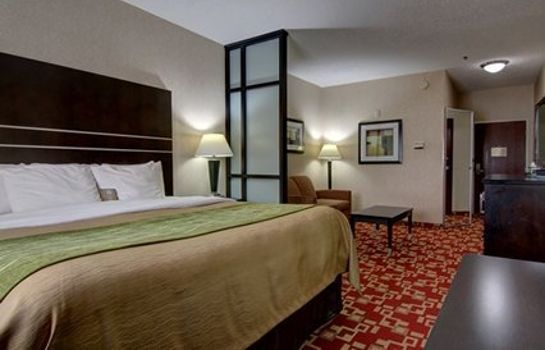 Suite Comfort Inn and Suites Griffin