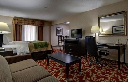 Zimmer Comfort Inn and Suites Griffin