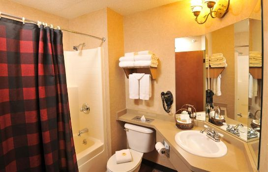 Kamers Stoney Creek Hotel Wausau
