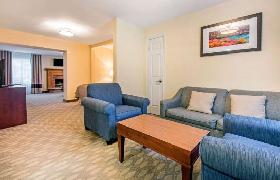 Camera Comfort Inn Fallsview