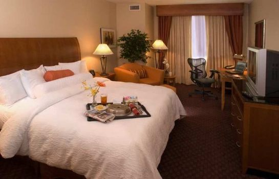 Zimmer Hilton Garden Inn DFW Airport South