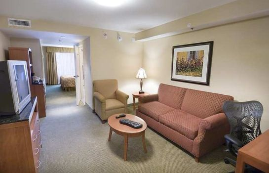 Suite Hilton Garden Inn Houston-Galleria Area