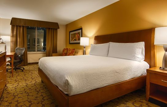 Kamers Hilton Garden Inn Houston-Galleria Area