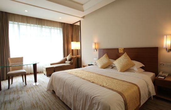 Single room (standard) Ramada Plaza