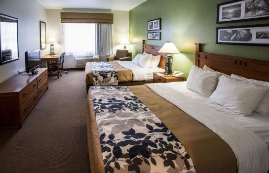Chambre Sleep Inn & Suites Conference Center
