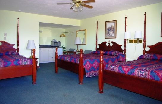Room BLUE SPRUCE MOTEL
