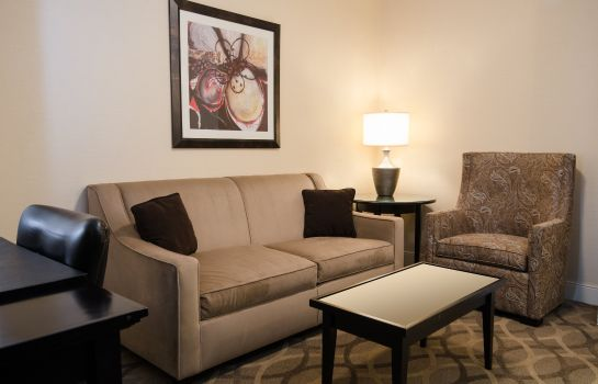 Suite WEST INN AND SUITES