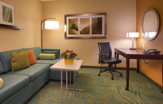 Zimmer SpringHill Suites Salt Lake City Downtown