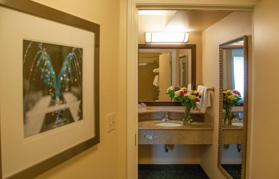 Suite SpringHill Suites Colorado Springs South