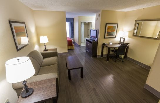 Zimmer Holiday Inn Express & Suites AUSTIN AIRPORT