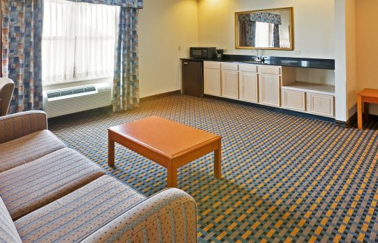 Suite Holiday Inn Express & Suites DALLAS/STEMMONS FWY(I-35 E)