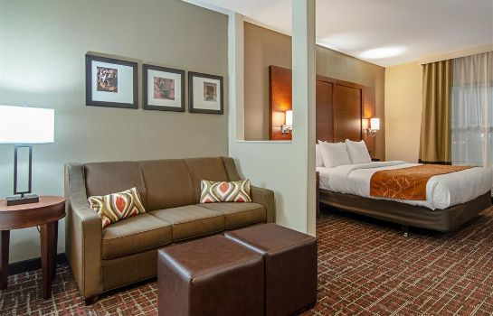 Suite Comfort Suites NW Dallas Near Love Field