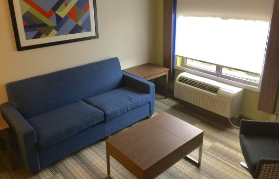 Suite Holiday Inn Express & Suites HOUSTON - MEMORIAL PARK AREA