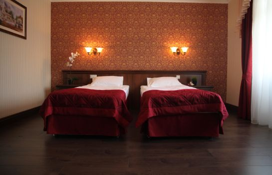Double room (standard) Grand Peterhof SPA