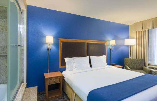 Suite Holiday Inn Express NEW YORK CITY - CHELSEA