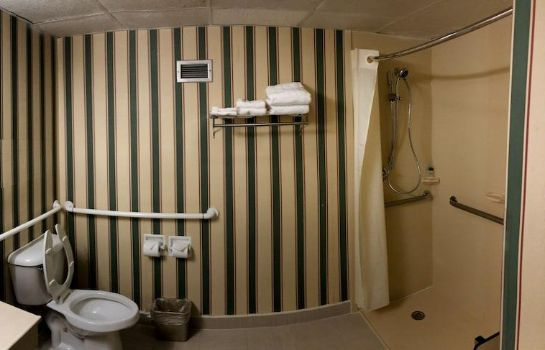 Bagno in camera E Hotel Banquet & Conference Center