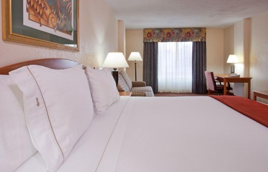 Suite Holiday Inn Express EL PASO-CENTRAL