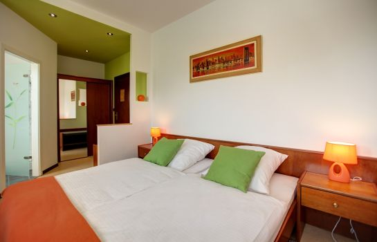 Double room (standard) Landmark Eco Hotel