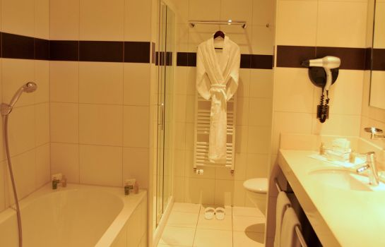 Information Airport Hotel Basel Convenient & Friendly