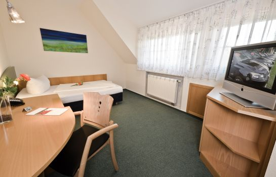 Single room (standard) Apartments & Hotel Garni Kurpfalzhof