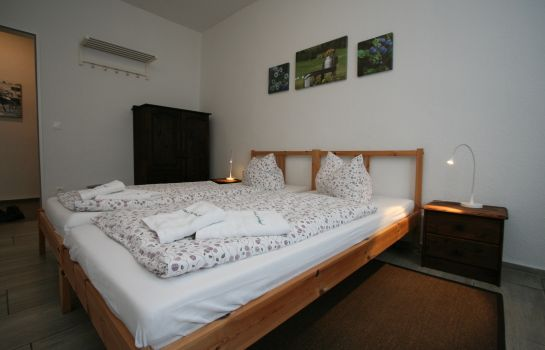 Double room (standard) Gestüt Lindenhof Pension