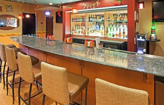 Hotel-Bar Holiday Inn & Suites ROCHESTER - MARKETPLACE