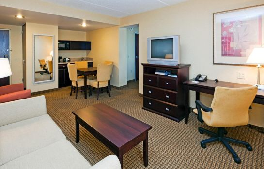 Suite Holiday Inn & Suites ROCHESTER - MARKETPLACE