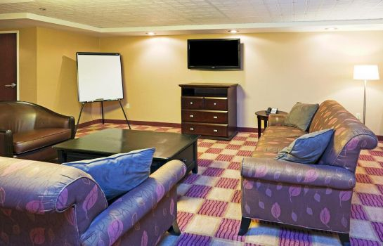 Zimmer Holiday Inn & Suites ROCHESTER - MARKETPLACE