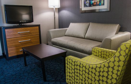 Kamers Holiday Inn Express & Suites JACKSON