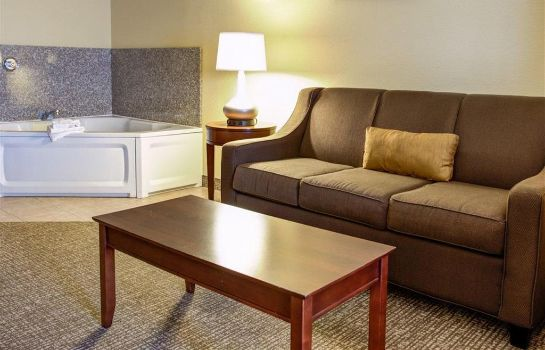 Suite Comfort Suites Ocala North