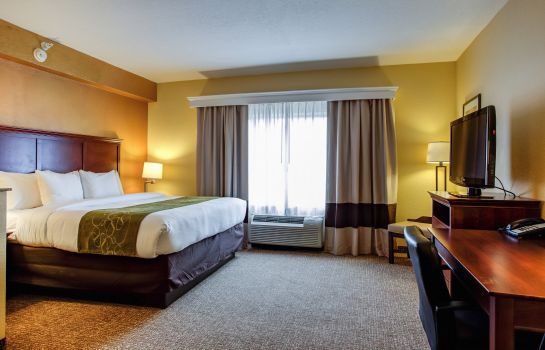Chambre Comfort Suites Ocala North