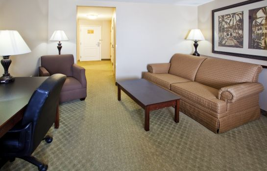 Zimmer Holiday Inn Express SAVANNAH AIRPORT
