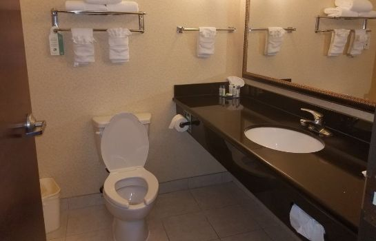 Bagno in camera Holiday Inn Express and Suites Longview South I20