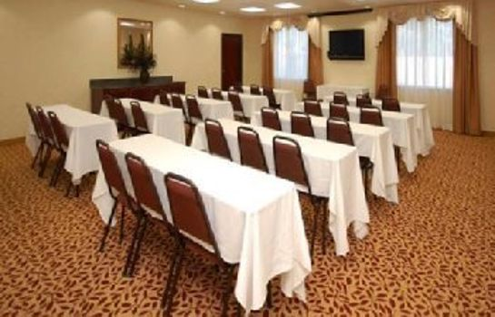 Sala konferencyjna Holiday Inn Express and Suites Longview South I20