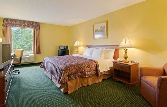 Einzelzimmer Standard Regency Inn and Suites