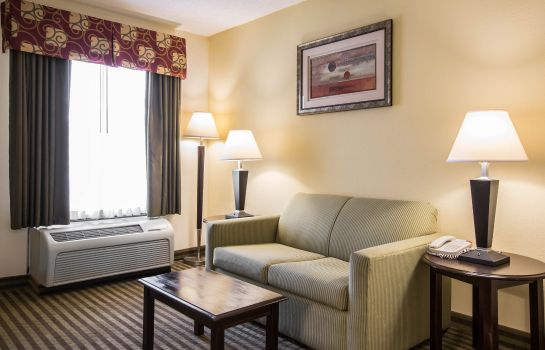 Suite Quality Inn and Suites Haywood Mall Area